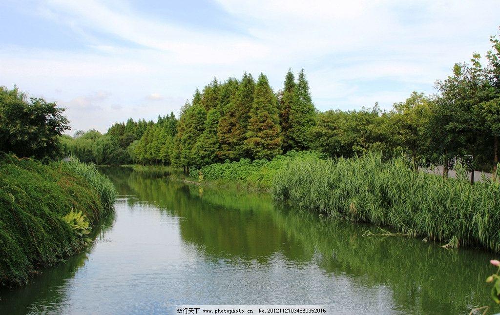 闵行体育公园竹��g._上海闵行体育公园水景图片