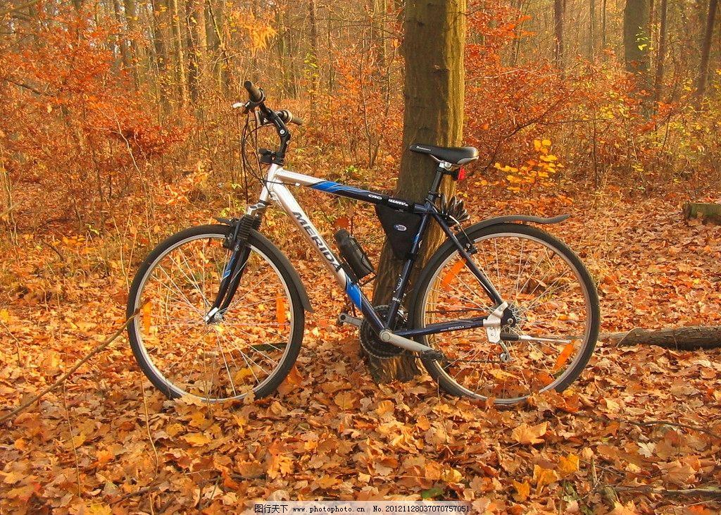 山地自行车 山地车 自行车