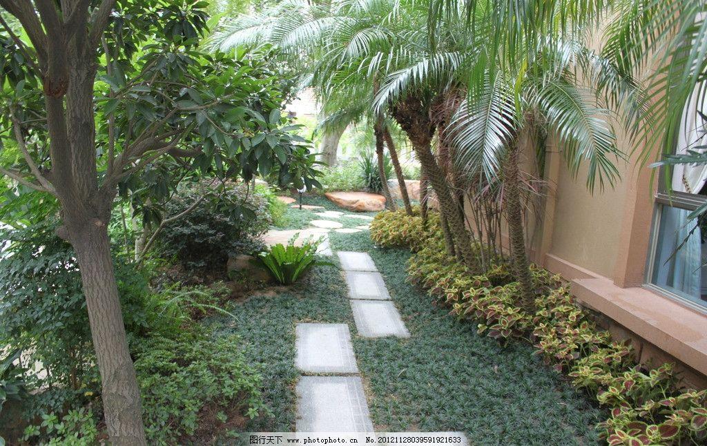 别墅园林 园林小品 园林景观 园林绿化 私家园林 庭院设计 灌木丛