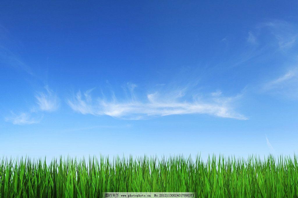 壁纸 草原 风景 天空
