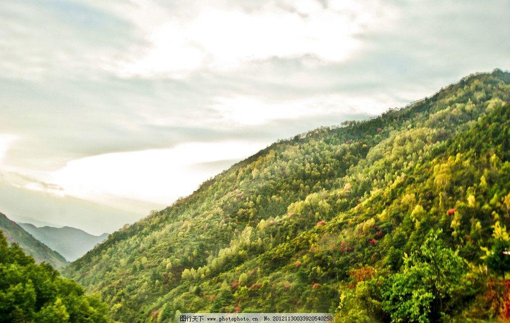 山中秋色 秋天 树木 红叶 绿山 山峦 树林 乌云 雾气 秋游紫柏坦