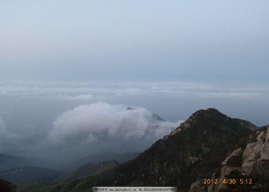 泰山 风景名胜 旅游景点 景点 风景 树林 松树 柏树 蓝天白云 云海 花