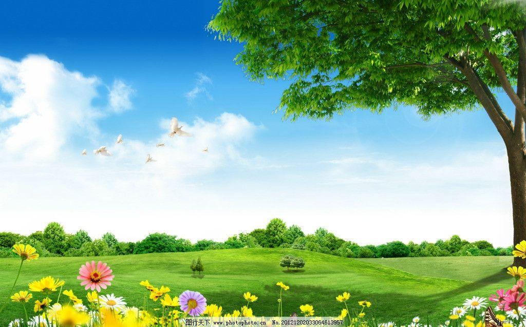 风景 景色 景观 户外 自然 绿色 蓝天 白云 草 绿草地 绿草 草地 树
