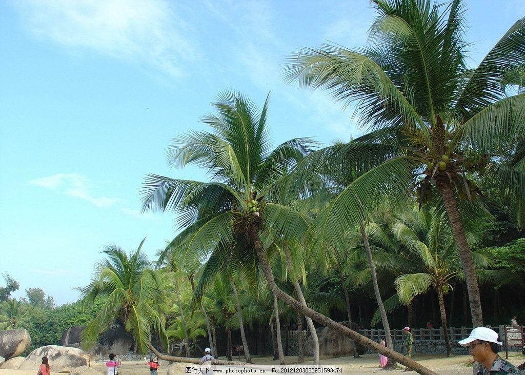 天涯海角 海南岛 沙滩 海滩 椰树 国内旅游 旅游摄影 摄影 72dpi jpg