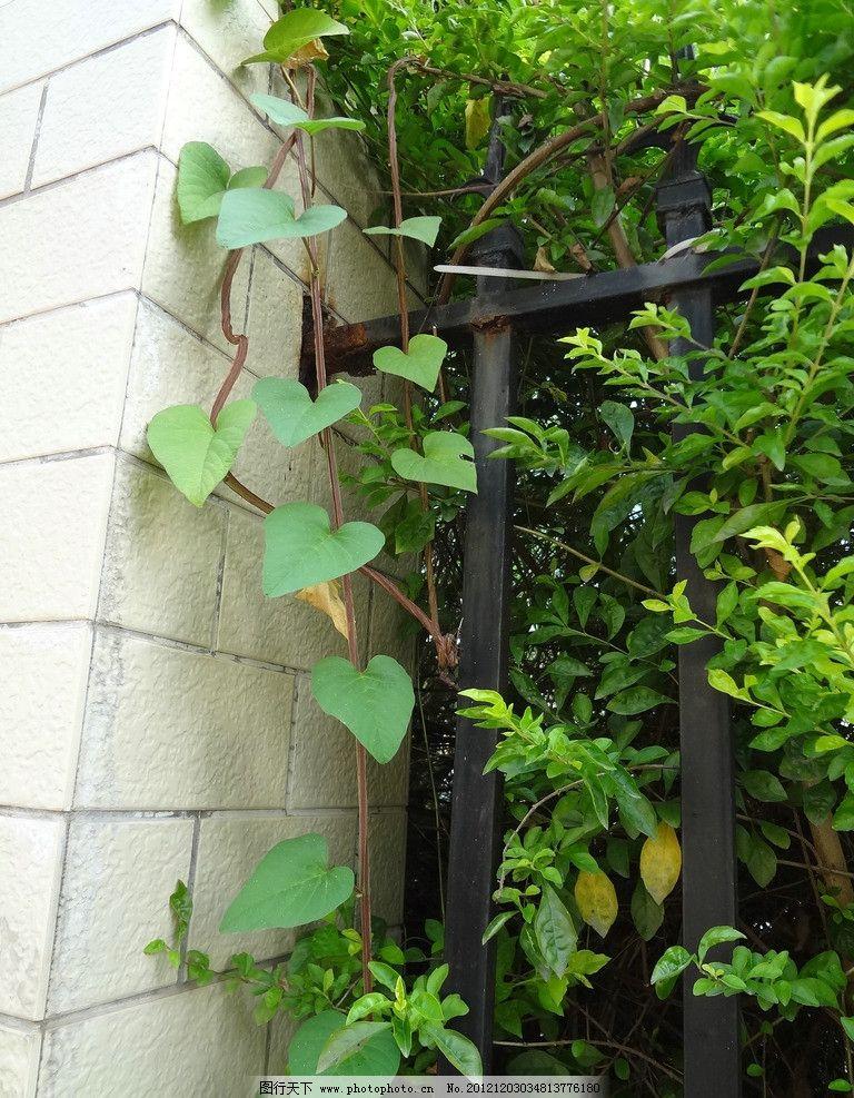 藤蔓水泥仿木栏杆