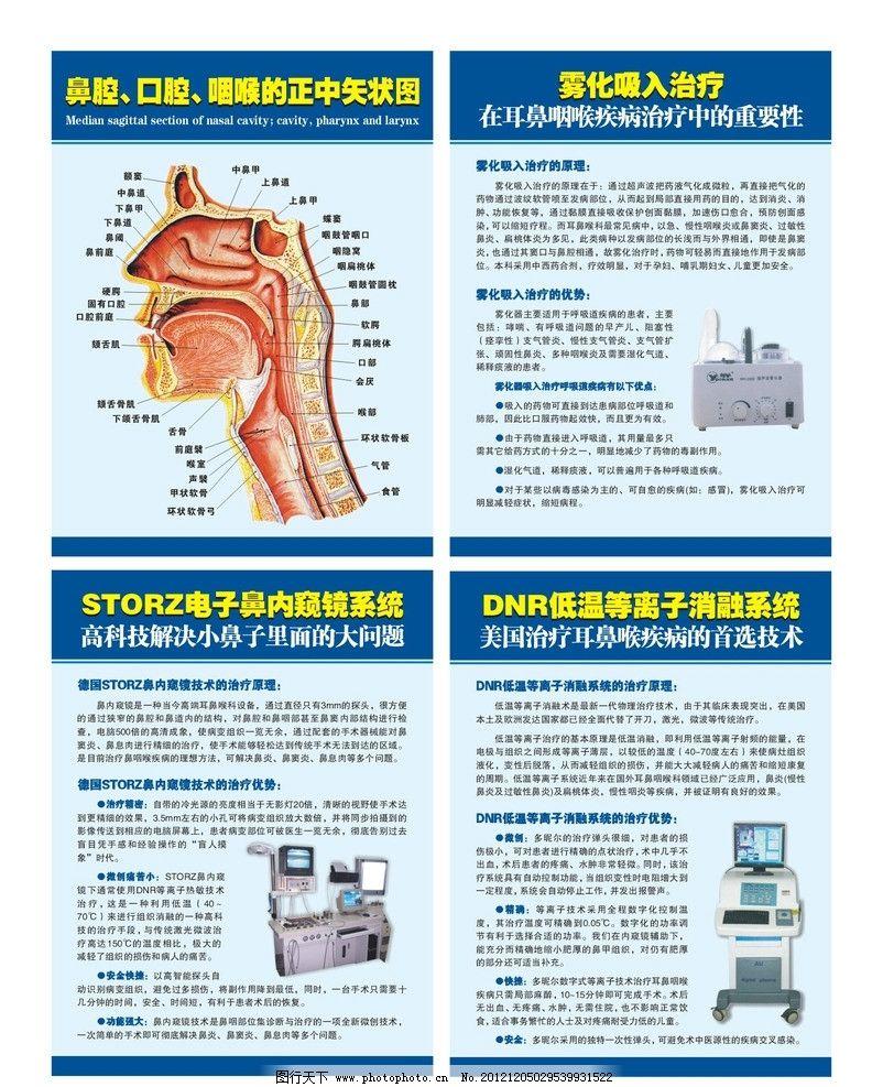 耳鼻喉广告 鼻腔 口腔 咽喉的正中矢状图 电子内窥镜 雾化治疗 低温