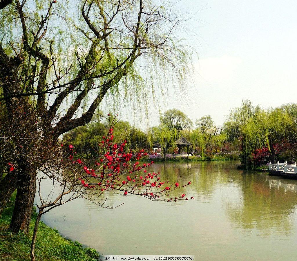 江南园林图片