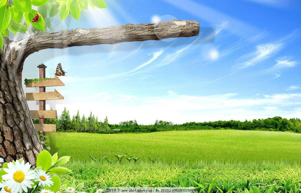 蓝天草地 风景 草地风景 景色 户外 自然 绿色 草 绿草 草地 大树下