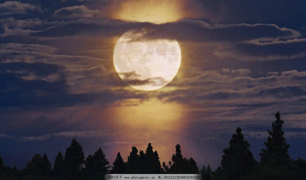 月亮 森林 夜晚 云层 轻悄悄