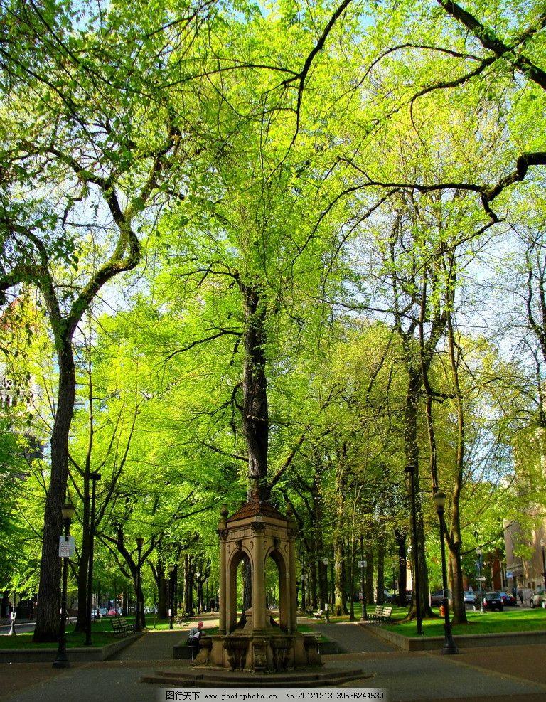 欧式凉亭 欧洲 欧式 公园 石亭 凉亭 亭子 树木 郁郁葱葱 大树 园林建图片