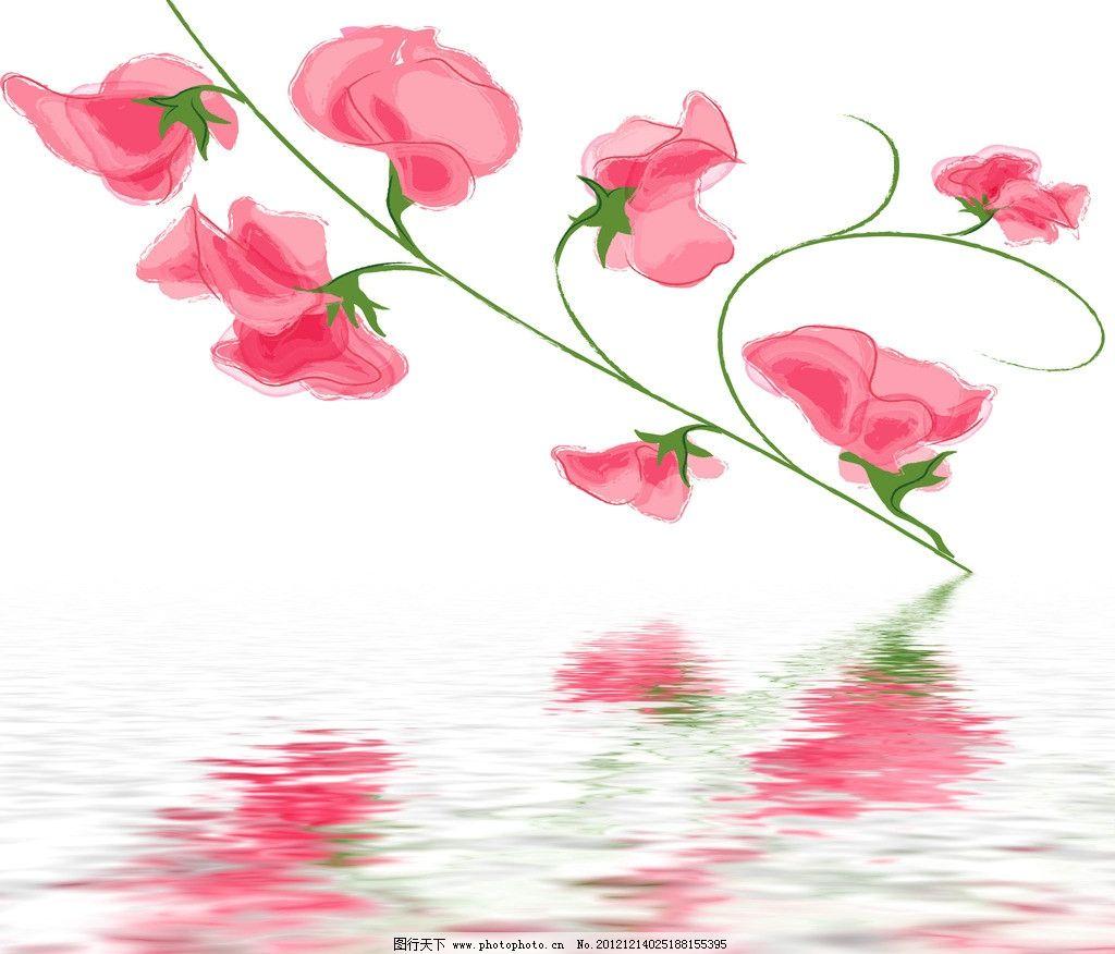 水中花卉 水中鲜花 水纹 倒影 红色花朵 粉色花朵 唯美 梦幻 唯美花朵