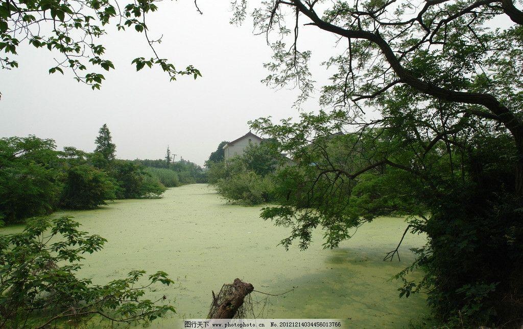 河流 树木 远树 自然风景树 山水风景 自然景观 摄影 72dpi jpg