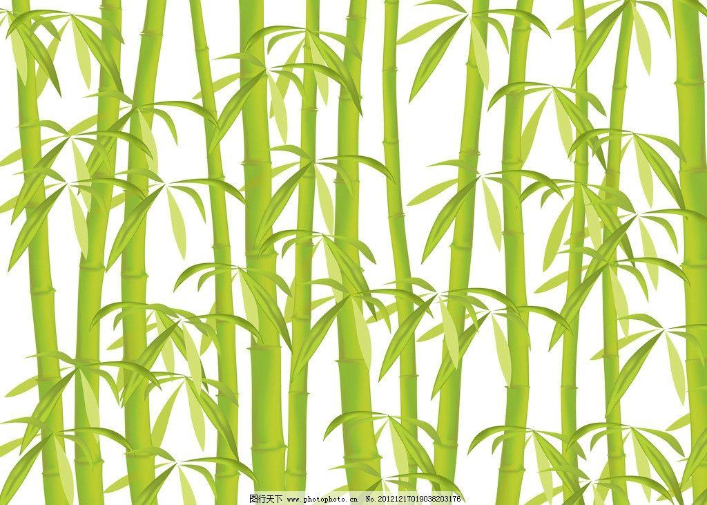 手绘竹子 高精度 手绘 绿色 竹子 美术绘画高精素材 竹叶 竹林 绘画