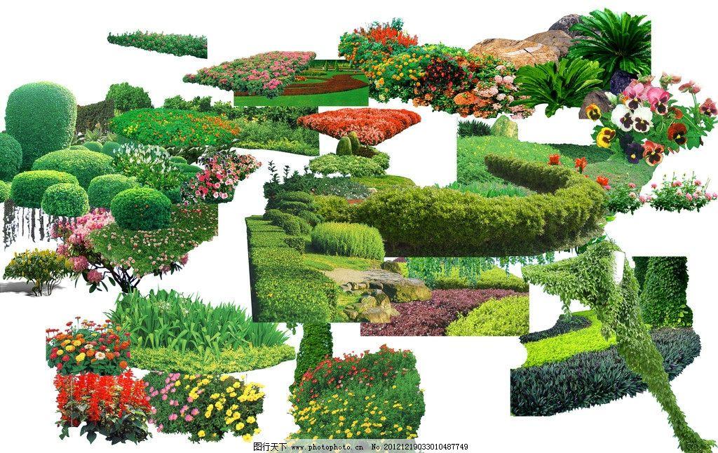 园林素材 植物素材 乔木素材 景观素材 地被 灌木 源文件