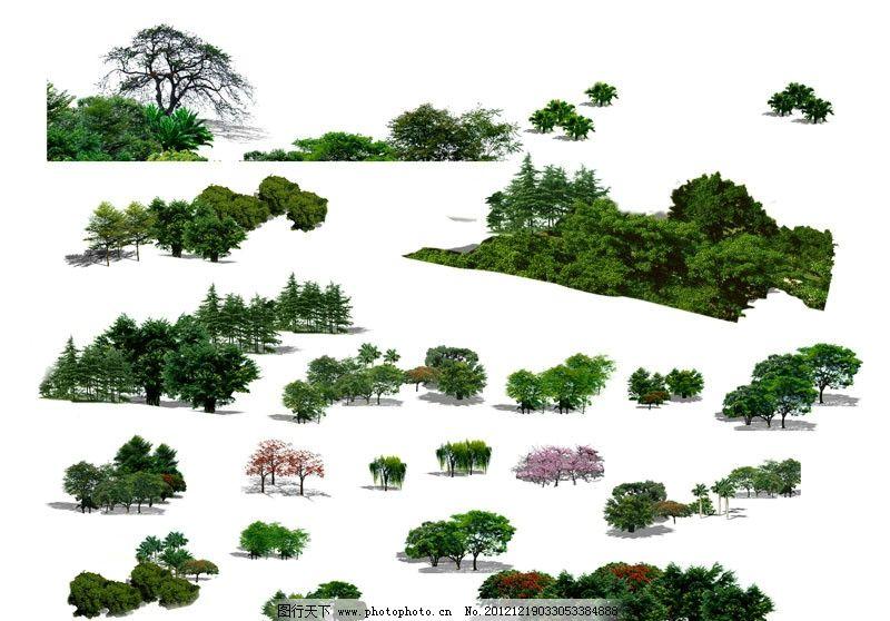 鸟瞰素材 园林素材 乔木素材 景观素材 素材 乔木 地被 灌木 效果图