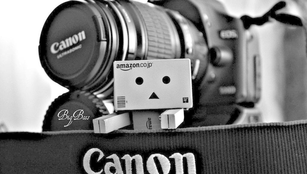 纸箱小人 danbo 小盒子 纸箱人 可爱 生活 素材 佳能相机 黑白 生活百