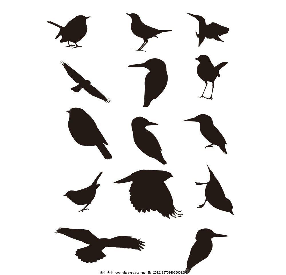 鸟剪影 剪影 动物剪影 鸟 鸟类 生物世界 矢量 ai