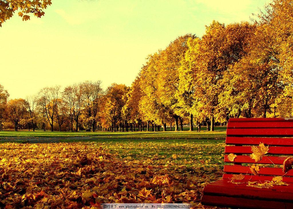 公园椅子 落叶 草地 绿色 树木 秋天 秋天的美好 300dpi rgb 魅力风景