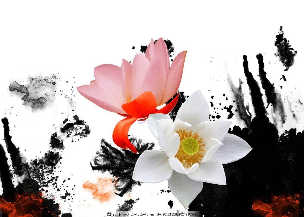荷花 水墨 芙蓉 山水 红色 白色 莲花 中国风 墨迹 背景底纹 底纹边框