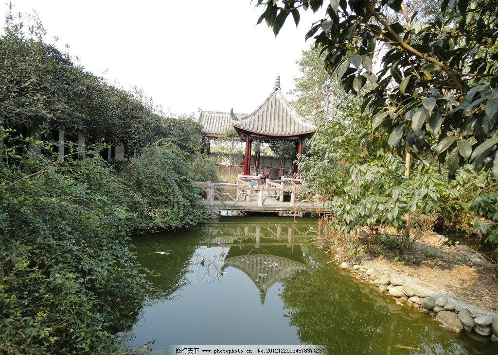 农家乐风光 风景 亭台 水池 连翘 迎春 桂花 田园风光 自然景观 摄影
