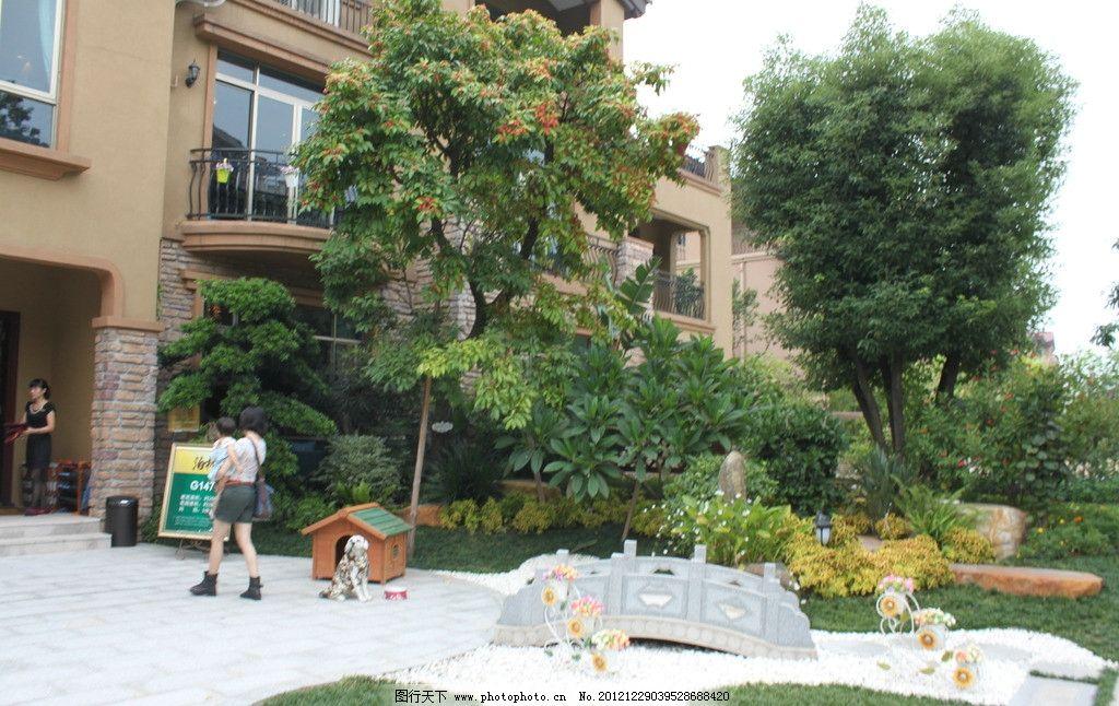 灌木丛 园林景石 现代园林 花草 树木 石板路 石桥 狗窝 花园设计
